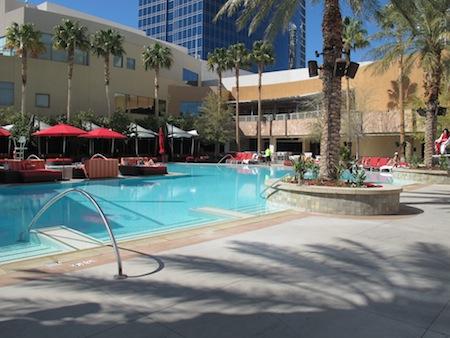 Palms piscine