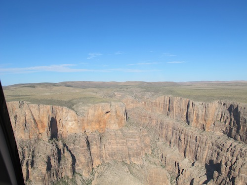 Grand Canyon verdure