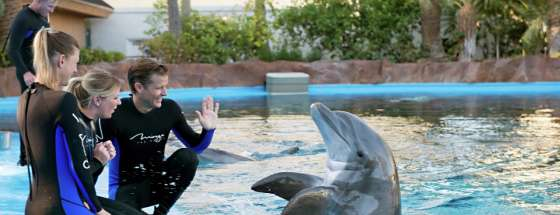 mirage-secret-garden-dolphin-habitat-trainer-waving.tif.image.560.215.high