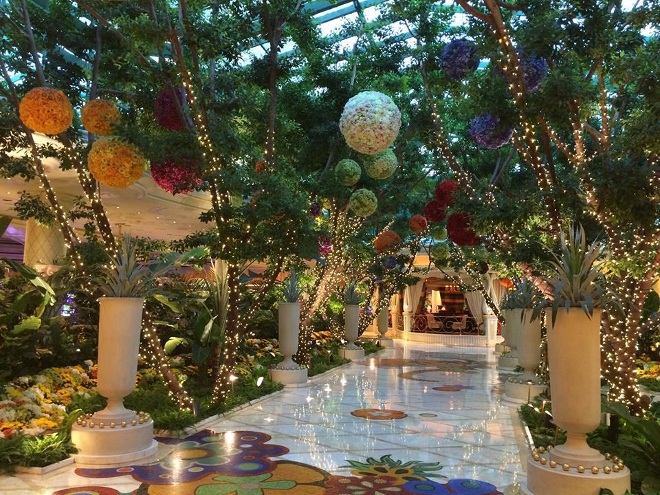 Hall Wynn Las Vegas