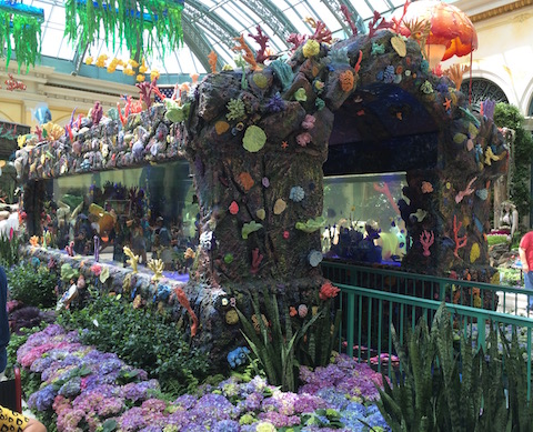 jardin-bellagio-aquarium-juil-2016